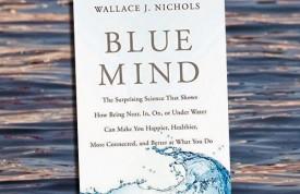 Blue Mind cover