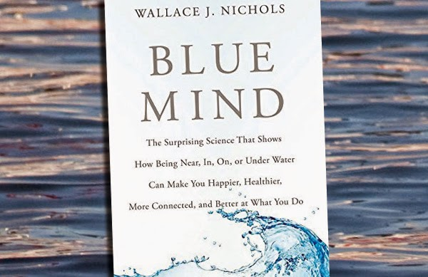 Blue Mind cover