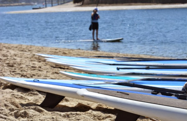 SUP boards on the beach