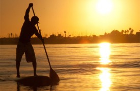 SUPing in the sunlight