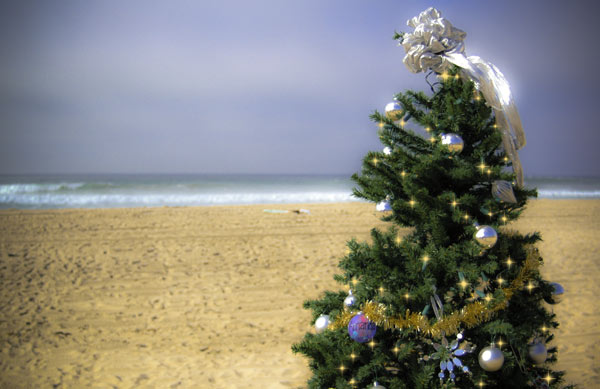 Holiday tree at the beach